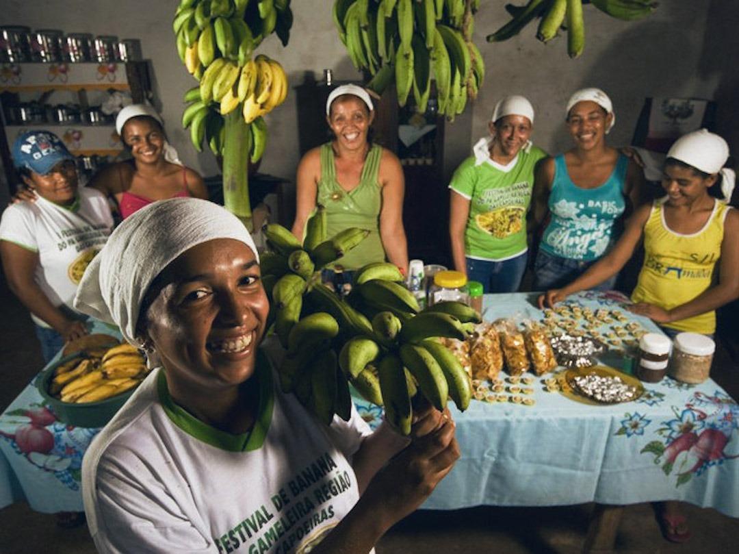 Idec lança mapa de feiras orgânicas